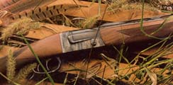 Firearms-Shotgun for hunting